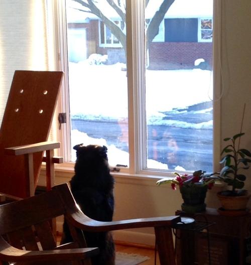 Frida at Window 02.14