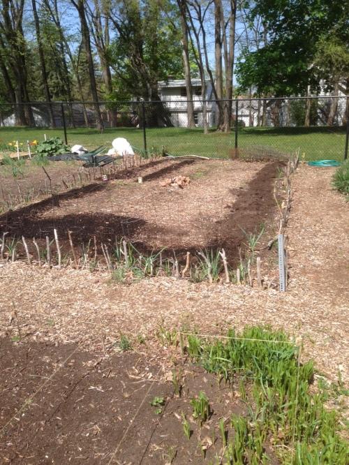 Garden 05.07.15