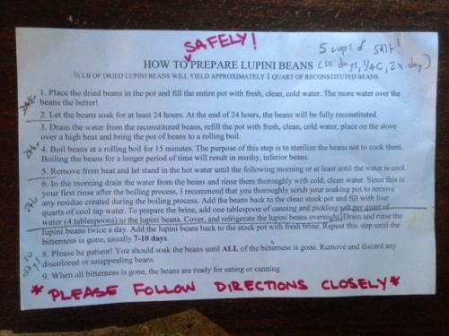 Lupini Bean Recipe 05.14.15